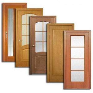 Двери, дверные блоки Починок