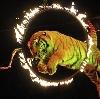 Цирки в Починках